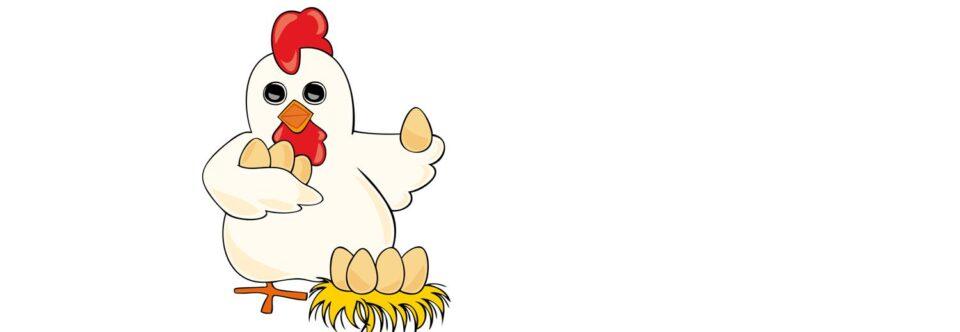 Come scegliere le galline (invece che le uova) per avere successo?
